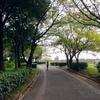 デイキャンレポ:ご近所公園(2016年10月)