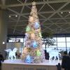 ご訪問ありがとうございます(1/Dec./2012)