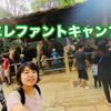 象近すぎ!チェンマイにある「メーサーエレファントキャンプ」 で象乗り体験してきた感想