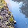 鯰釣り 鯰が潜んでいる場所