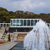 須磨離宮公園で春の撮影リベンジ