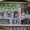 チンパンジーと人工アリ塚