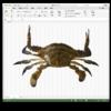 Execlにぶちこまれた画像の圧縮率を検証する(Microsoft Office Excel)