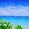 沖縄コスメが気になる!【沖縄の海が育んだ、泥洗顔フォーム】【琉球すっぽんのコラーゲンゼリー】