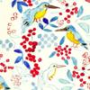 鳥水彩イラスト