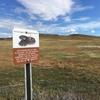 アーバインのお手軽トレイル | カリフォルニアのマウンテンバイク