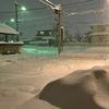 雪、雪、雪!