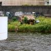 神崎川の岸辺、左門橋に謎の飛行機小屋があるんだが・・・【尼崎市】