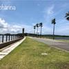 父の日と玄界灘あおぞらマラソン大会・国営海の中道海浜公園
