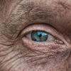高齢者に対する加圧トレーニングの効果に関する研究2018