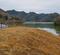 大池と山野里工業団地の調整池(兵庫県上郡)