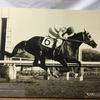 『競馬パネル:テスコガビー「1975年:第36回優駿牝馬」』