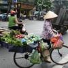 ベトナム  ハノイの食材