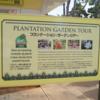 【ハワイ観光】ドール・プランテーション観光。珍しい植物を楽しむ!
