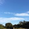 ◇ 生目古墳群の丘