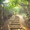 sAn trailの初登山