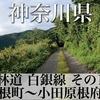 【動画】神奈川県 林道 白銀線 その1 (箱根町〜小田原根府川)