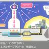 ポケモン盾プレイ日記その3 進化ラッシュ