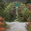 「モネの庭」光のフェスタ始まります。
