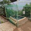 庭に池をつくる(⑫ネット貼り+外構 その2)