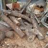 機械での薪割り 後2回位で Wood chopping with a machine