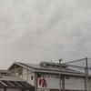 銭湯訪問㉕~地下鉄の竹田駅近くにある・・・「伏見力の湯」に行ってきました~