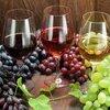 デームズのワイン入門講座「どの味を飲めばいいの?」