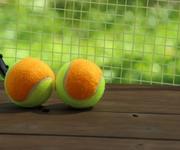 女子テニスで恋人同士が対戦後にキス 同性愛者から意外な反応が
