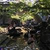 【王子】音無親水公園:日陰多し!夏の水遊びにぴったり!