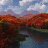 桜、紅葉の3DCG