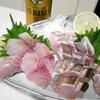 イサキ35cm~ブリ90cmまで釣った魚を捌いて料理する。