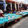お魚いっぱい!チャガルチ市場🐡🐡🐡