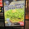 鉄板ベイビー新宿東口店