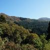 〈個人山行〉京都百名山シリーズNo.9 由良ヶ岳