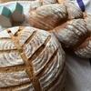 ホシノ酵母 ハーブパン作り【満席になりました】