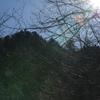 独り遊山「韮生越」 林道のこと