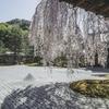 高台寺  【飾らない女性 ねねの寺】見どころ  伏見城から移築された思い出の住まい