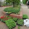 公開空地花壇植え付け(ボランティア)