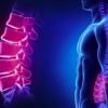 理学療法ガイドライン -腰部のスクリーニング-