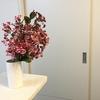 7月の花はサルスベリ 枝を飾るのには向いていないのかしら?