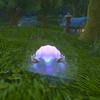 【World of Warcraft】バトルペットKirin Tor Familiarの入手方法