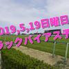 2019,5,19日曜日 トラックバイアス予想 (東京競馬場、京都競馬場、新潟競馬場)