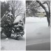 裕坊、雪眺め