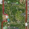 今年も昭和記念公園に