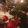 クリスマスの写真会☆無事成功しました。