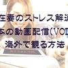 駐在妻のストレス解消法!海外で日本の動画配信VODを観る方法は?【Netflix・Amazonプライムビデオ・視聴】
