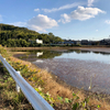 口池(兵庫県神戸)