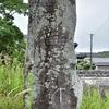 もともと貴船神社があった場所にまつられる庚申塔 福岡県遠賀郡遠賀町尾崎
