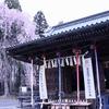 国指定重要文化財・仙台東照宮へ桜を観に行った話〜仙台なのに徳川家康を祀る?〜