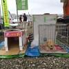 ペットも家族の一員〜九都県市合同防災訓練で日本愛玩動物協会埼玉県支所が呼びかけ
